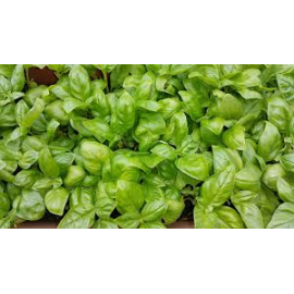 Basil Lemon a'100 g