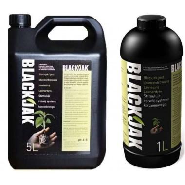 BlackJac a'5l