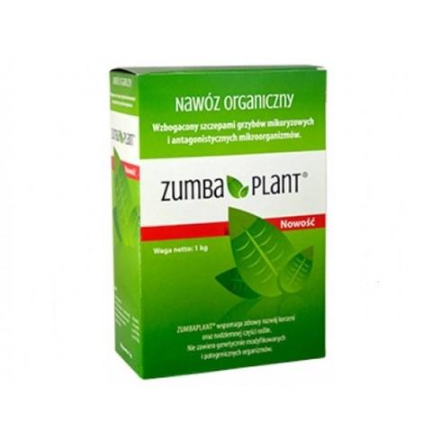 Zumbaplant a'1kg