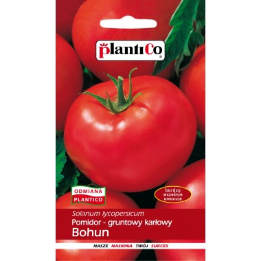 Pomidor gruntowy SOLANUM BOHUN 1 g