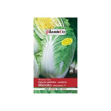 Kapusta pekińska Manoko - mieszaniec 0,15g